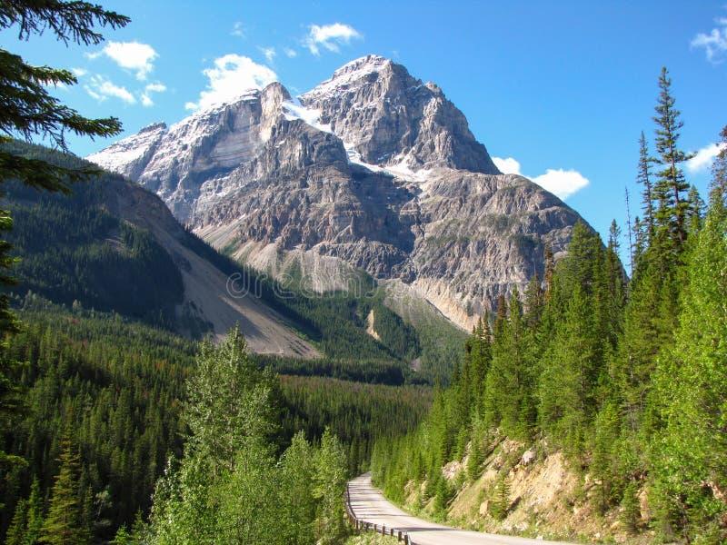 Camino que lleva a la montaña enorme en el punto de vista espiral de los túneles, Yoho National Park, A.C., Canadá imagenes de archivo