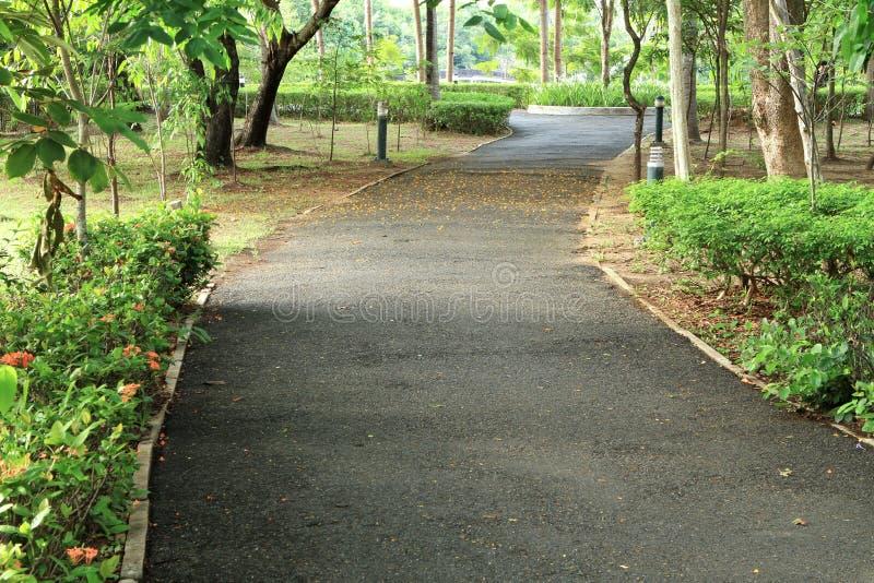 Camino que recorre en el parque imagenes de archivo