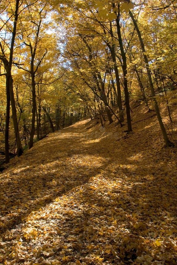 Camino que recorre a lo largo del río Misisipi, Minneapolis imagen de archivo