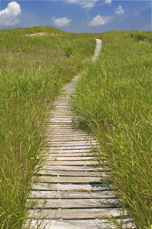 Camino que recorre a través de las dunas de arena imagenes de archivo