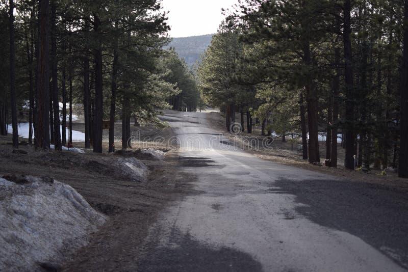 Camino recto en montañas fotos de archivo