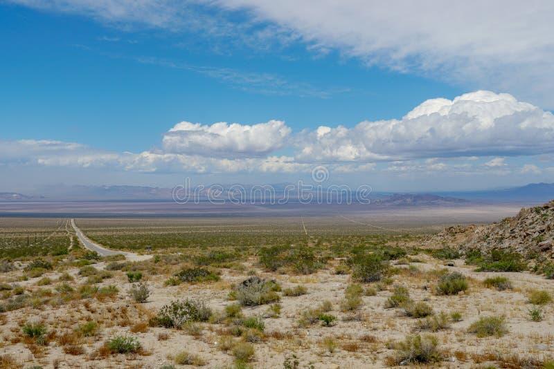 Camino recto Joshua Tree Park siguiente del desierto sin fin fotos de archivo libres de regalías
