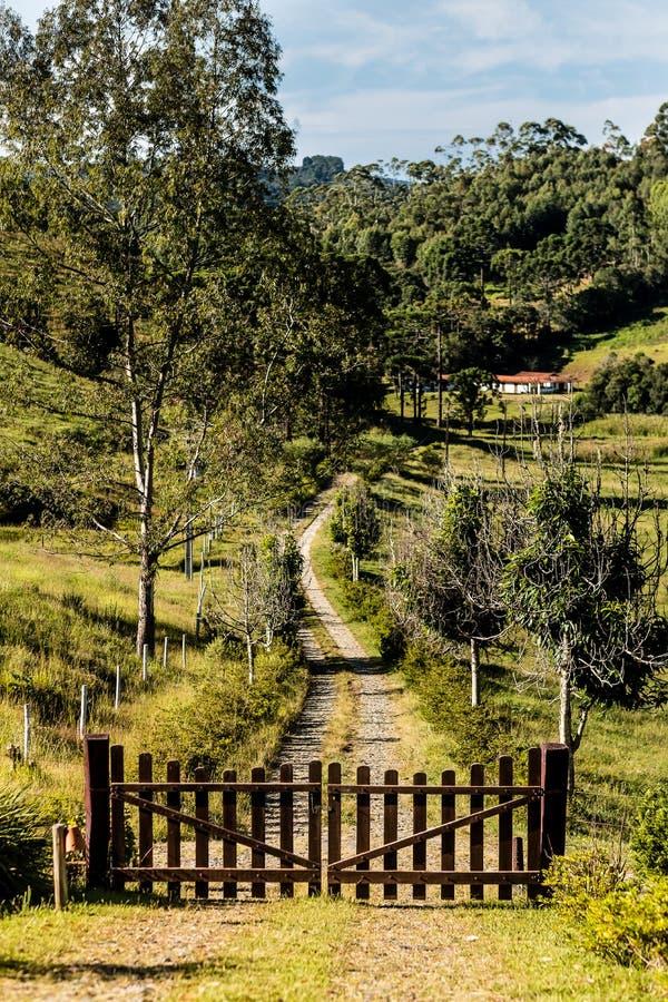 Camino rocoso en declive que lleva a la puerta de madera, bosque en backgro imagen de archivo