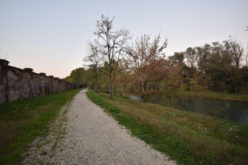 Camino rodeado de vegetación cerca del río Serio en Crema, Italia foto de archivo
