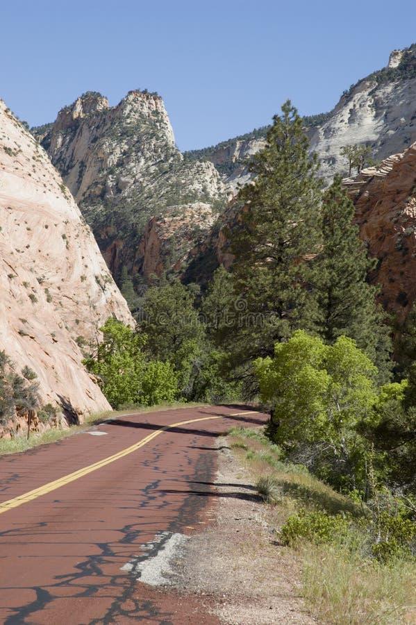 Camino rojo en Zion fotografía de archivo