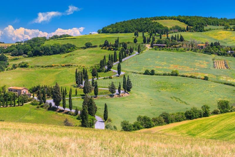 Camino rural de enrrollamiento maravilloso con los cipreses en Toscana, Italia, Europa imágenes de archivo libres de regalías