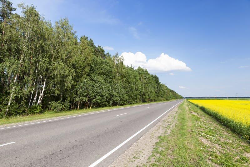 Camino rural en asfalto fotos de archivo libres de regalías