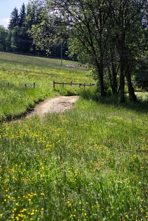 Camino rural en el Tatras polaco imagen de archivo