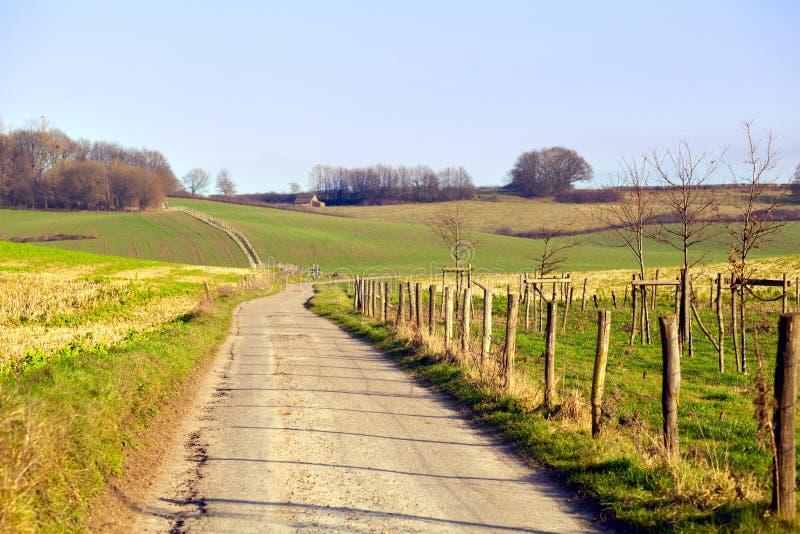 Camino rural en Limburgo imagenes de archivo