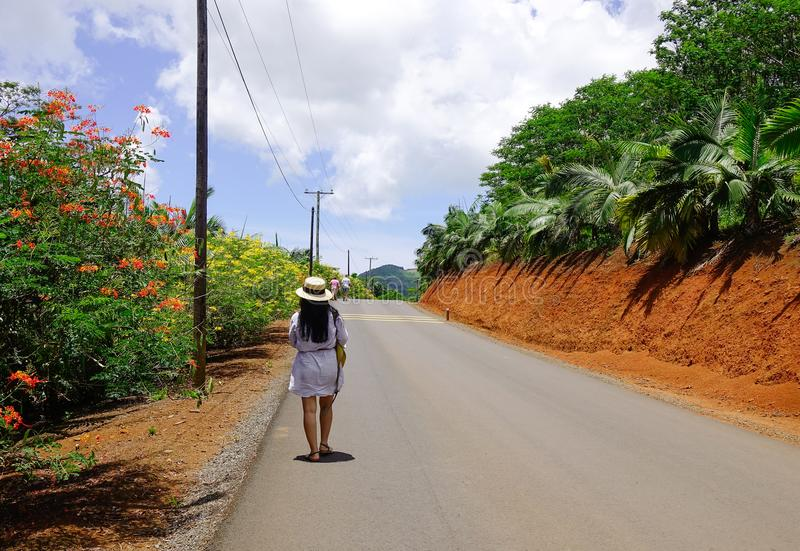 Camino rural en Mauritius Island imagen de archivo