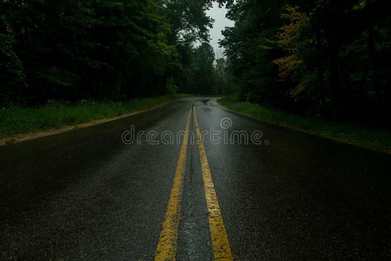 Camino solitario foto de archivo