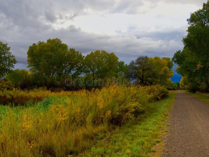 Camino solitario de octubre fotografía de archivo libre de regalías