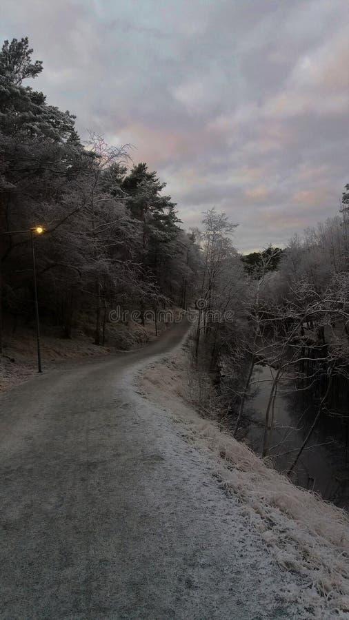 Camino solo debajo finales de noviembre del cielo fotos de archivo libres de regalías