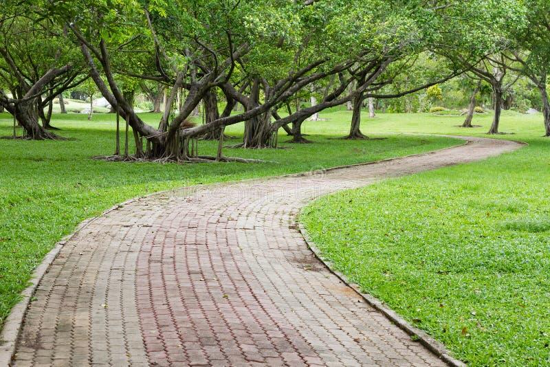 Camino sombrío en el parque foto de archivo