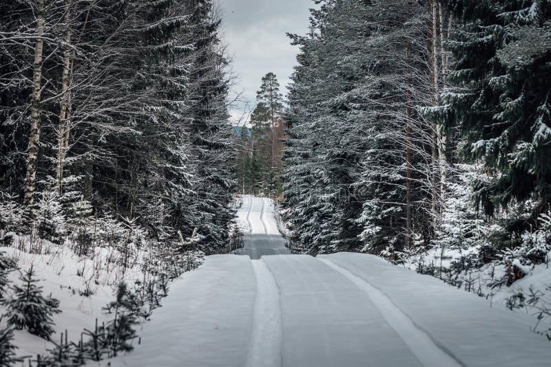 Camino Unploughed del invierno foto de archivo
