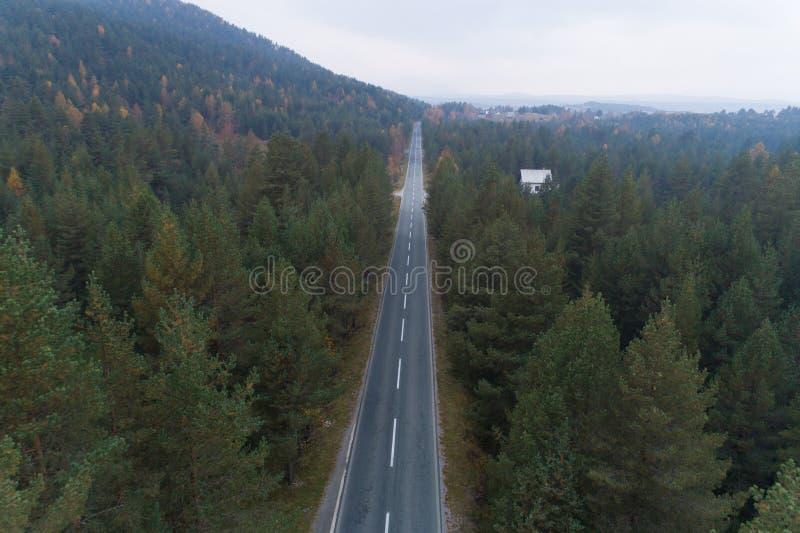 Camino vacío con la opinión aérea del bosque del pino imagenes de archivo