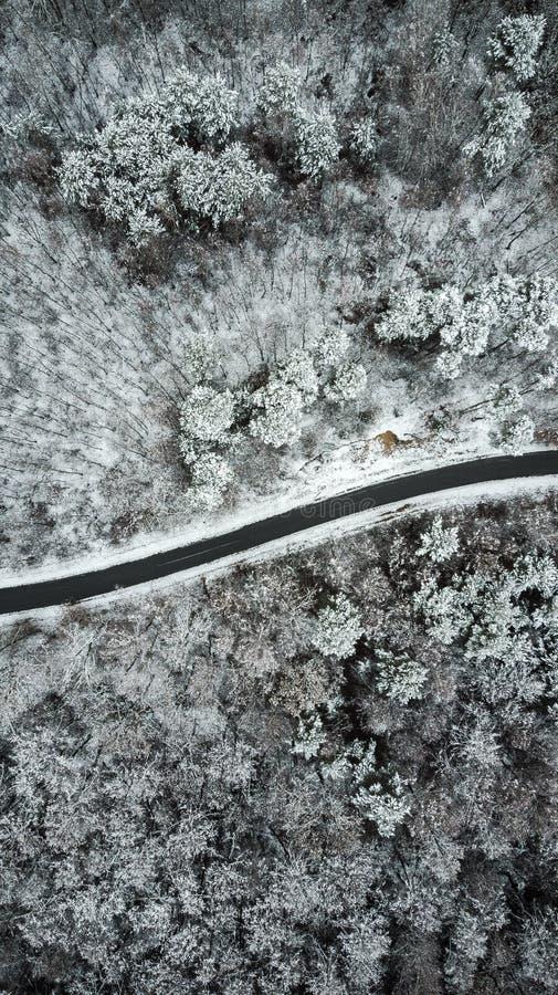 Camino vacío en el bosque nevoso, opinión aérea del abejón imagenes de archivo