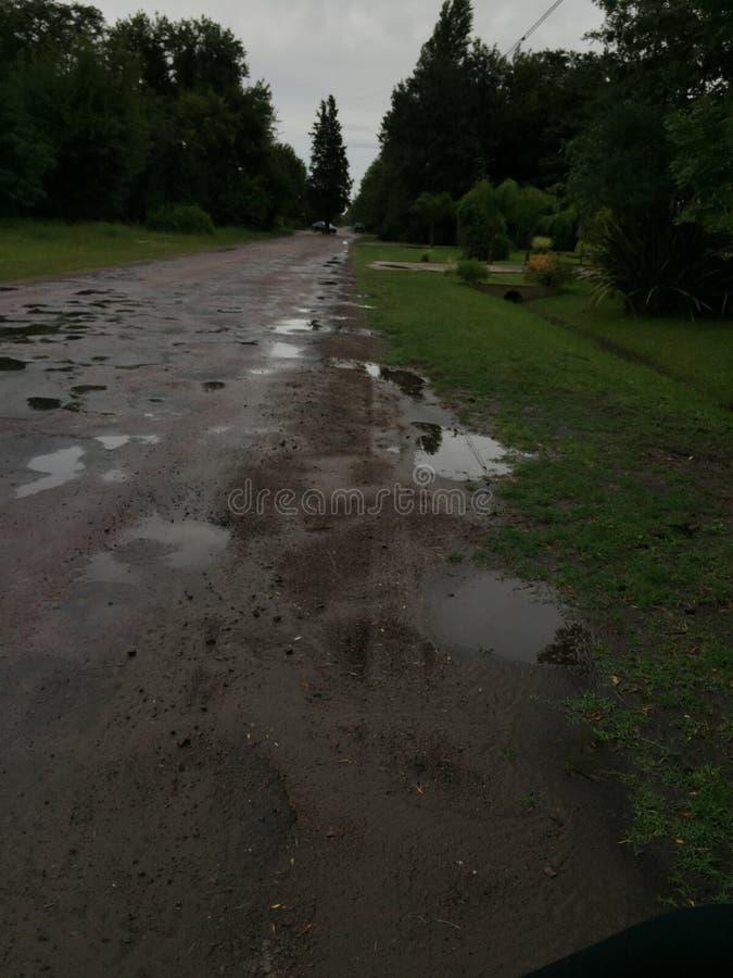 Camino verde después de la lluvia imagenes de archivo