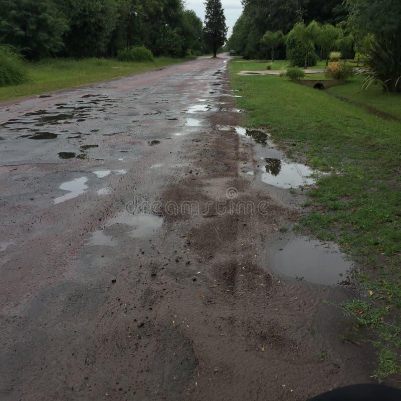 Camino verde después de la lluvia foto de archivo libre de regalías