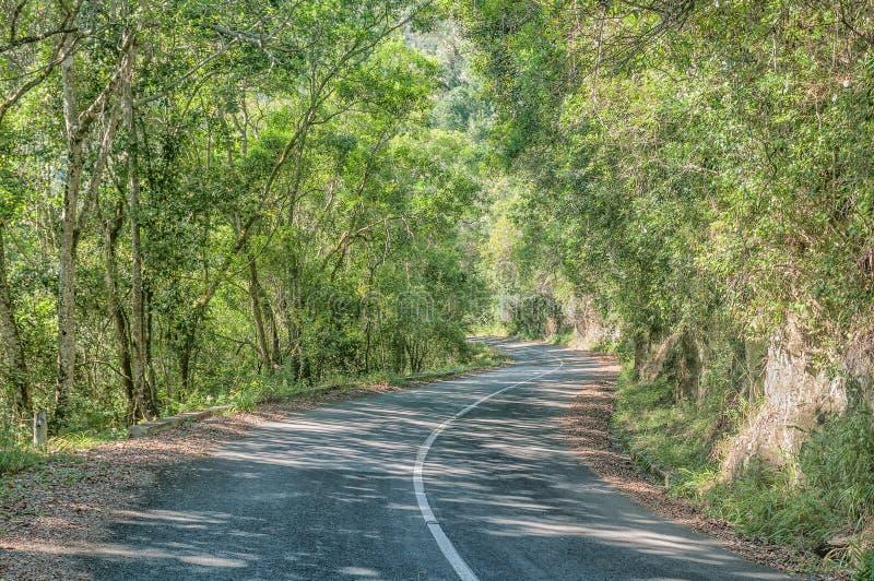 Camino viejo vía el paso de Bloukrans fotos de archivo