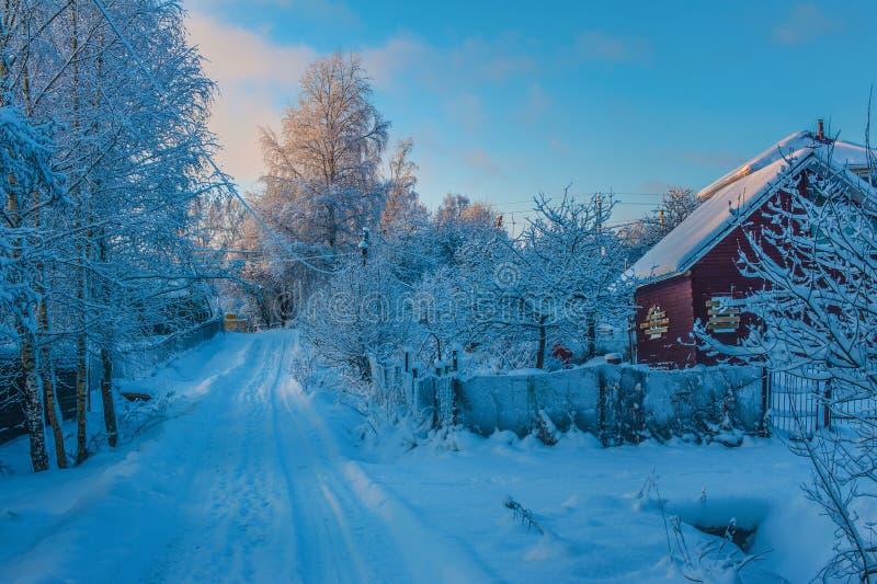 Camino y árboles rurales del invierno en nieve imagenes de archivo