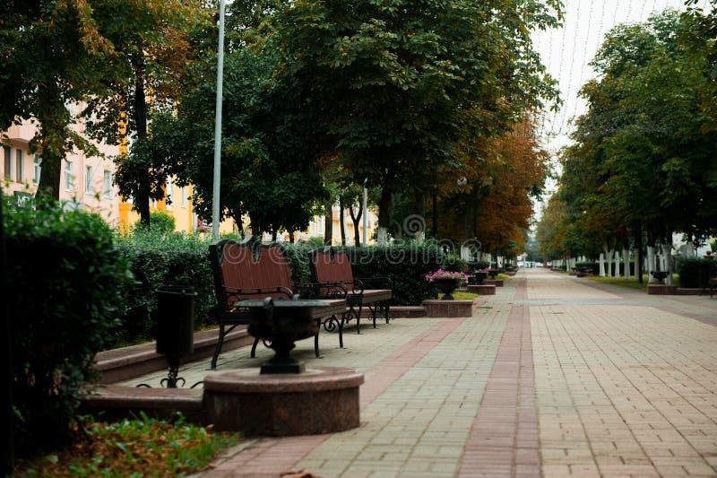 Camino y banco de madera en un parque hermoso imágenes de archivo libres de regalías