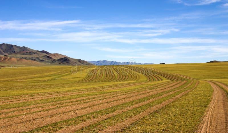 Caminos de la Mongolia imagen de archivo