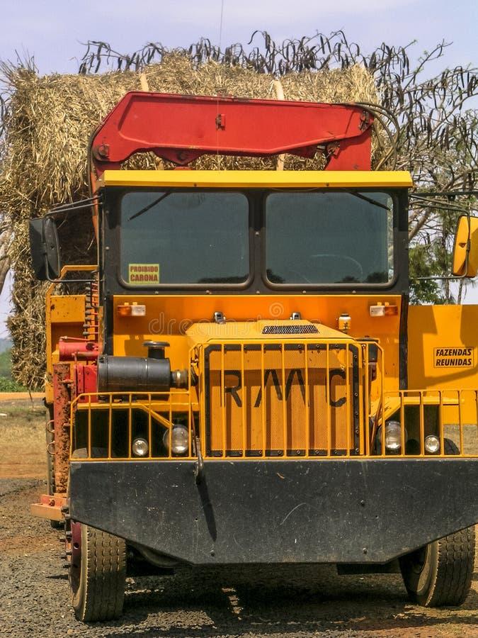 Camion caricato con fieno da usare come alimentazione per il bestiame immagine stock libera da diritti