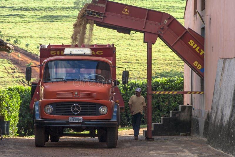 Camion con il foraggio della canna da zucchero immagini stock