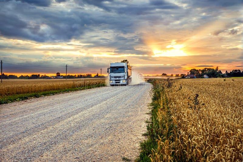 Camion de grain sur une route rurale à côté d'un champ de seigle au coucher du soleil photos stock
