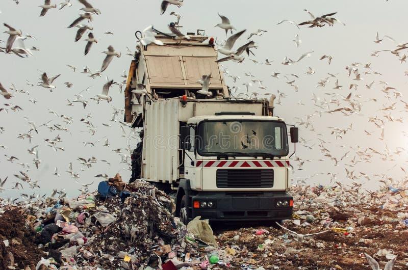 Camion di immondizia su un materiale di riporto immagine stock libera da diritti