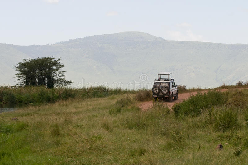 Camion di safari fotografia stock libera da diritti
