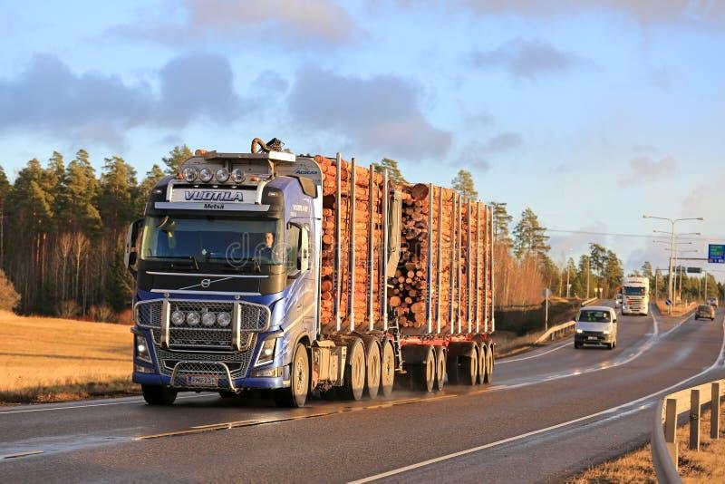 Camion en bois bleu de transport de Volvo FH16 sur la route en hiver photos libres de droits