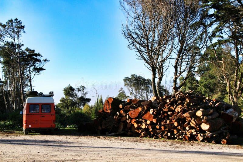 Camionete alaranjada estacionada ao lado da lenha cortada em uma floresta imagem de stock