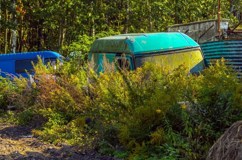 Camions abandonnés de transport dans les buissons photos stock