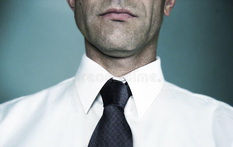 Camisa e laço brancos imagem de stock royalty free