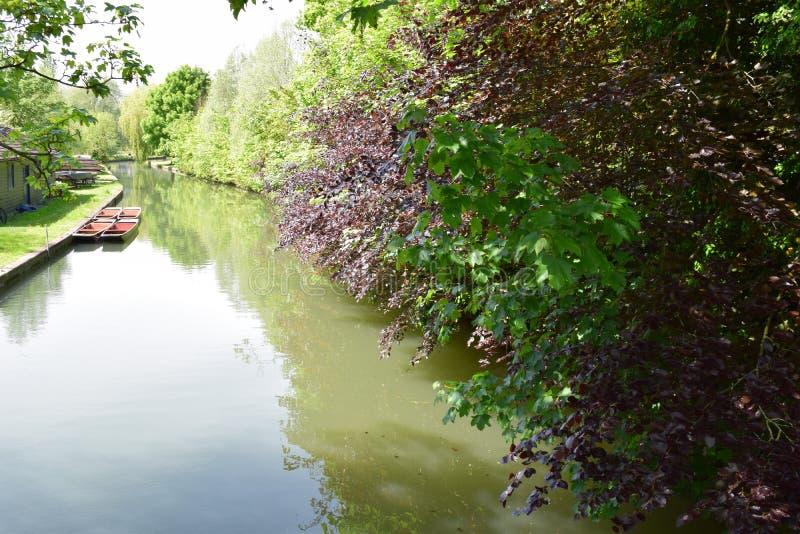 Camma Cambridge del fiume fotografie stock libere da diritti