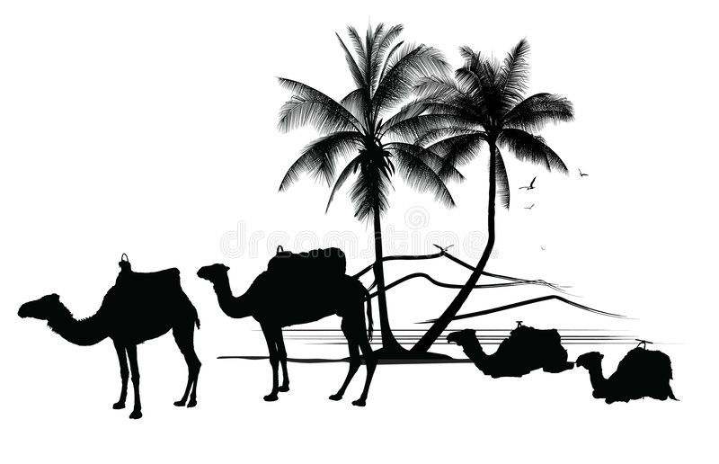 cammelli e palma illustrazione vettoriale