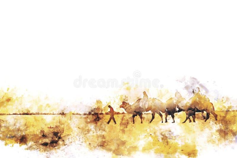 Cammelli nella pittura dell'acquerello del deserto sui wi bianchi del fondo illustrazione vettoriale
