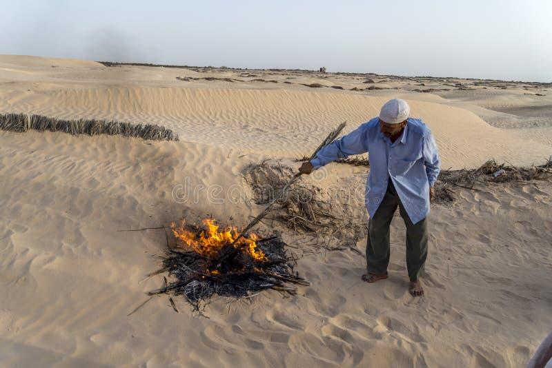 Download Cammello Tunisia fotografia editoriale. Immagine di turismo - 55362126