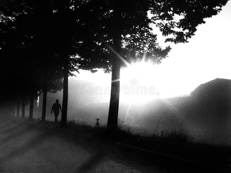 camminando attraverso l'indicatore luminoso fotografia stock