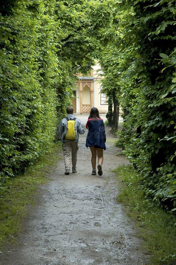 Camminando attraverso la foresta immagine stock