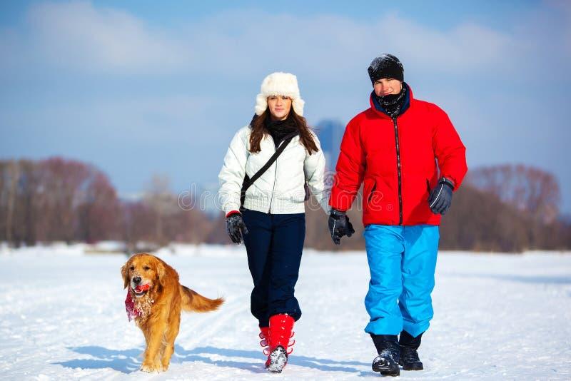 Camminando con il cane fotografie stock