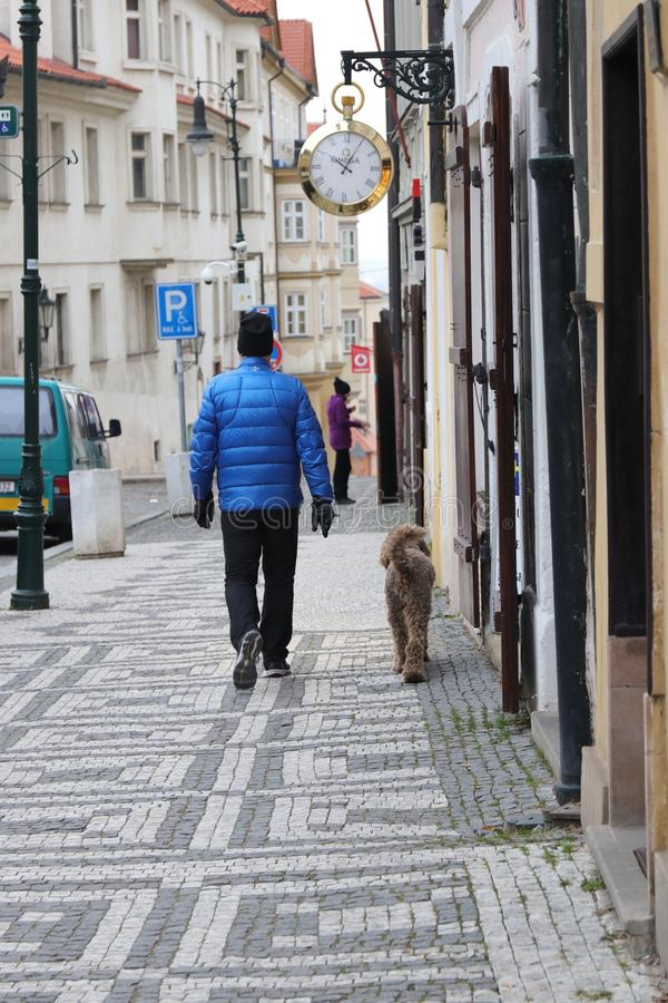 Camminando con un cane su una via della città fotografia stock libera da diritti