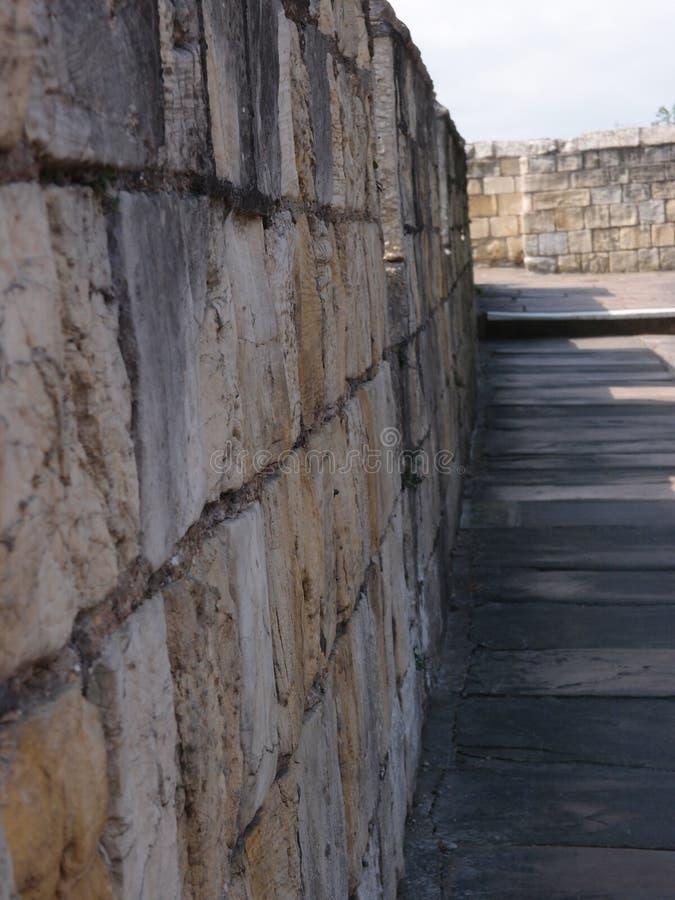 Camminando la parete fotografia stock