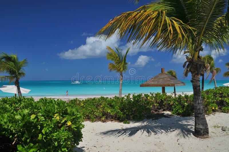 Camminando lungo una di belle spiaggie di sabbia bianche sui Turchi e sul Caicos fotografie stock libere da diritti