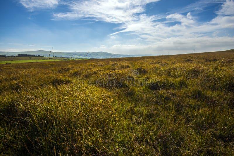 Camminando su Dartmoor, Devon, Inghilterra immagine stock libera da diritti
