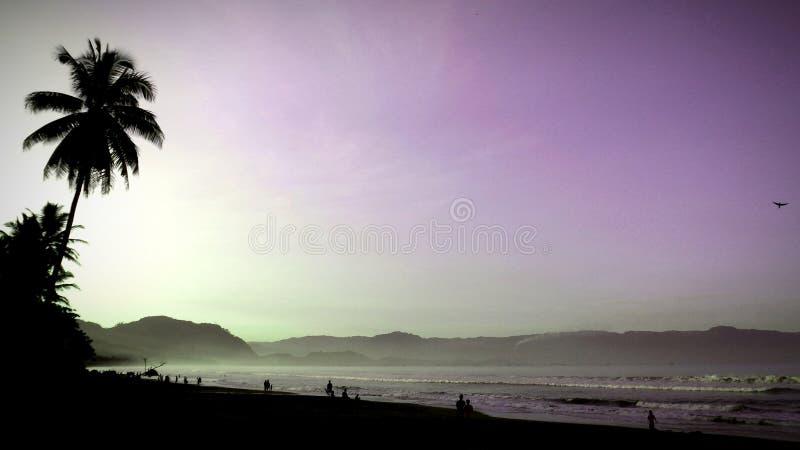 Camminando sulla spiaggia alla mattina fotografia stock