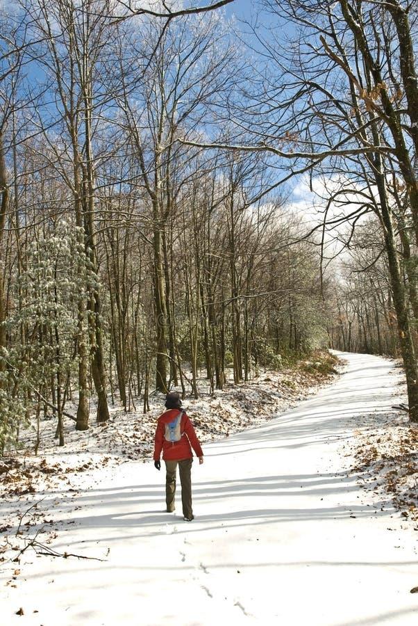 Camminando sulla strada/inverno/neve immagini stock libere da diritti