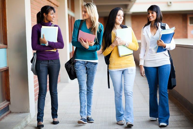 Camminare degli studenti di college immagine stock libera da diritti